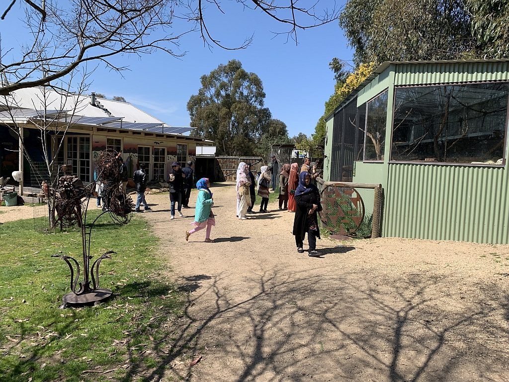 Arrival at Mansfield Zoo