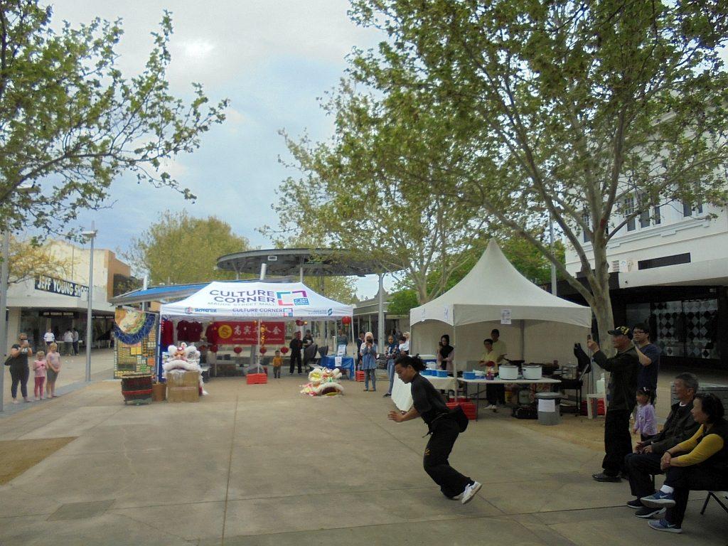 Kung Fu demonstration at Culture Corner