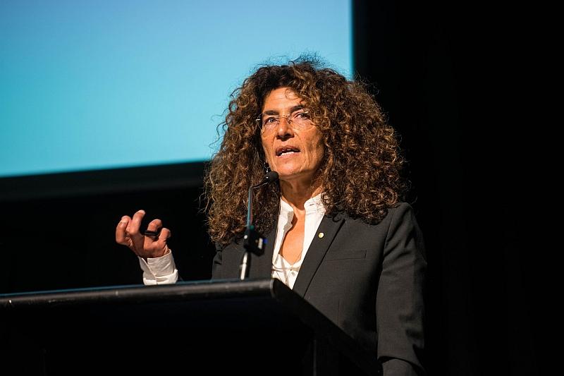 Hana Assafiri OAM at FECCA 2019