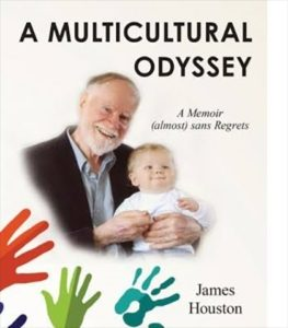 Book Cover - A Multicultural Odyssey